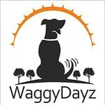 Waggy Dayz